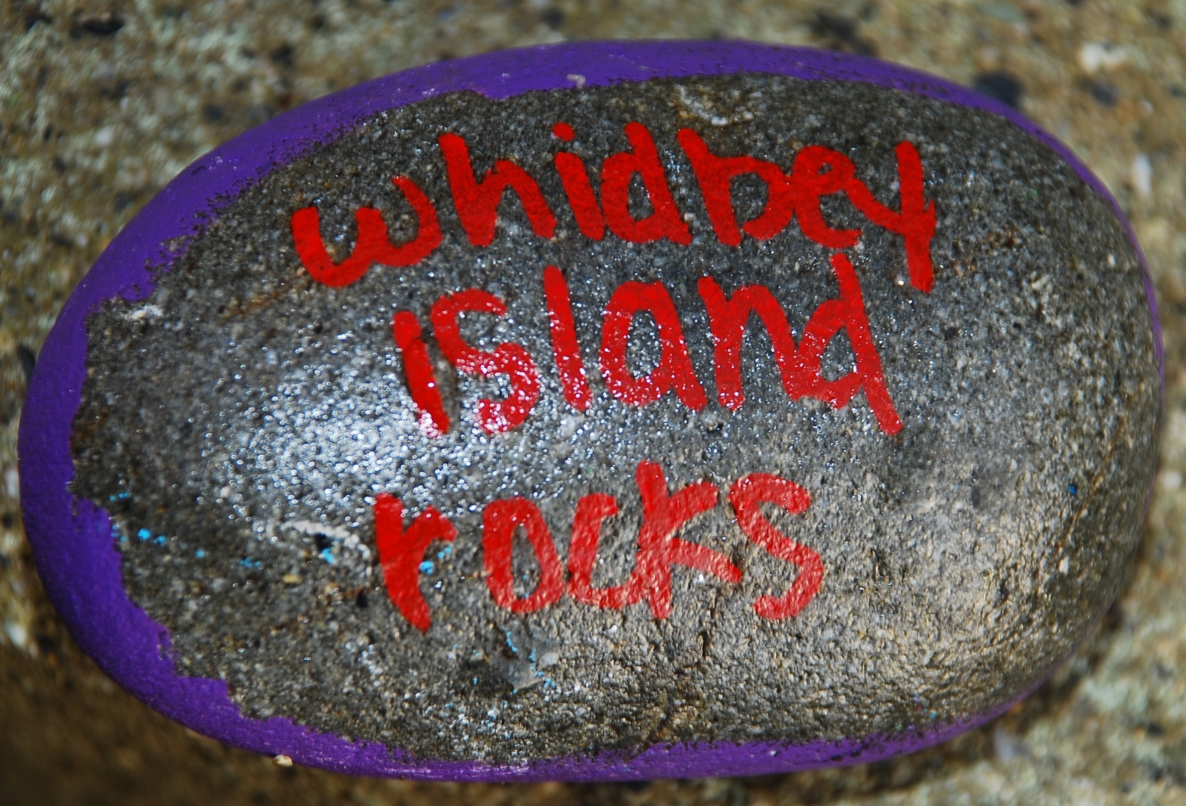 Whidbey Island Painted Rocks